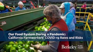 Our Food System During a Pandemic